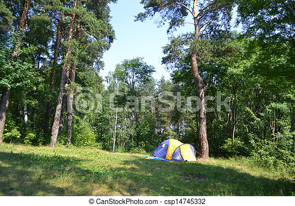 Camping tent and forest - csp14745332