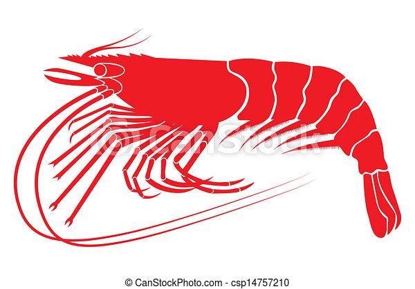 Shrimp Logo Vector Red Boiled Shrimp in Vector