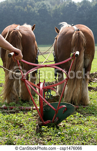 Ploughing team - csp1476066