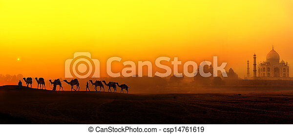 Taj Mahal Sunset view in India. Panoramic landscape with camels silhouettes and Tajmahal indian palace - csp14761619