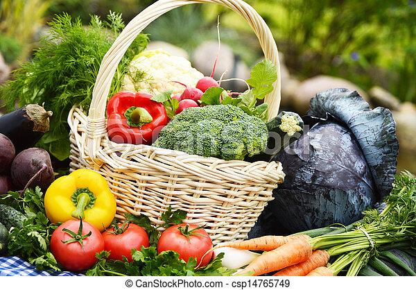 Assorted vegetables in wicker basket in the garden - csp14765749