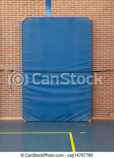 Blue Gym Mat