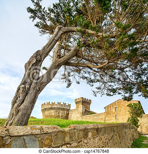 Pine tree in Populonia medieval village landmark, city walls and tower on background. Tuscany, Italy. - csp14767848