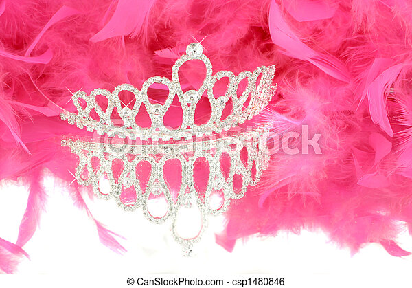 tiara and boa - csp1480846