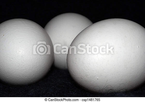 Eggs for health - csp1481765