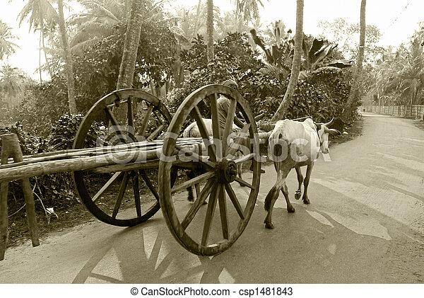 Bullock Carts Images Bullock Cart Ride a Bullock