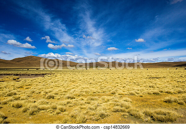 Desert and mountain over blue sky and white clouds on Altiplano,Bolivia  - csp14832669
