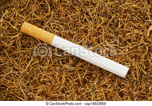 Cigarette - csp14833859