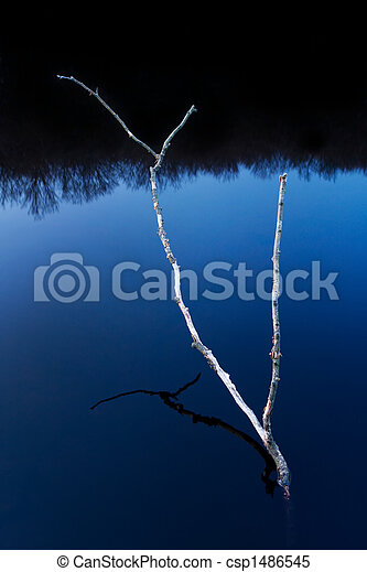 Branch abstract - csp1486545
