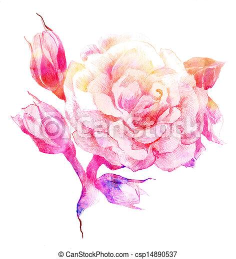 dessins de couleur rose croquis fleur fleur rose couleur csp14890537 recherchez des. Black Bedroom Furniture Sets. Home Design Ideas