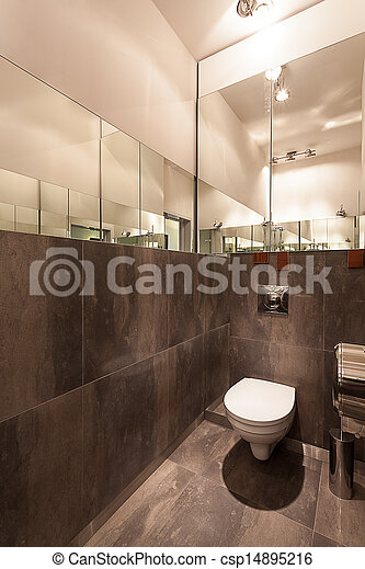 photographies de wc moderne toilette vertical vue gris int rieur wc csp14895216. Black Bedroom Furniture Sets. Home Design Ideas