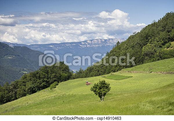 Rural Landscape in South Tyrol (Bolzano) - csp14910463