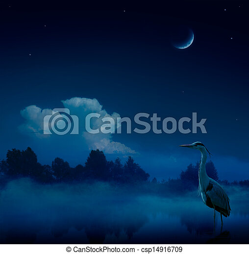 Art fantasy blue night  background - csp14916709