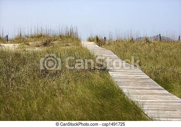 images de bois acc s plage chemin bois acc s sentier plage csp1491725. Black Bedroom Furniture Sets. Home Design Ideas
