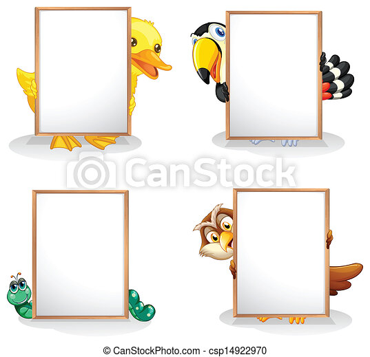 Animals hiding at the back of the whiteboards - csp14922970