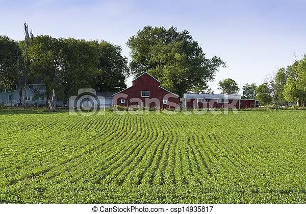 Archivi fotografici di fattoria rosso rosso fattoria for Piani di fattoria stonegate