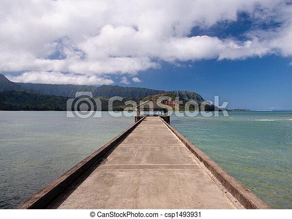 Pier at Hanalei Bay on Kauai - csp1493931