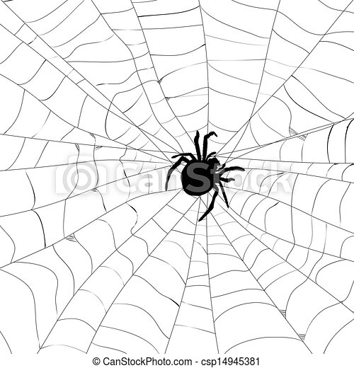 Vector Of Spider And Spider Web Csp14945381 Search Clip