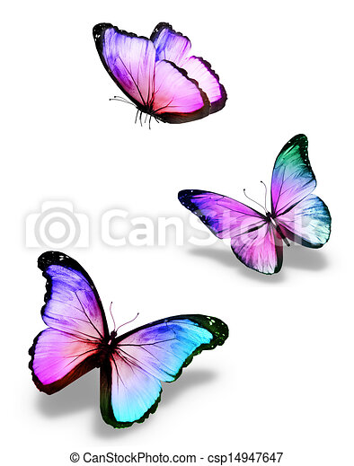 Dessin de couleur papillons trois three couleur - Papillon dessin couleur ...
