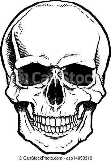 Black and white human skull with jaw - csp14950310
