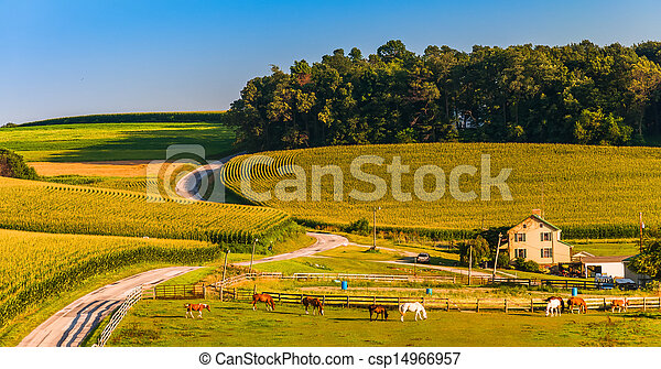 Horse farm and country road on a hill in rural York County, Pennsylvania. - csp14966957