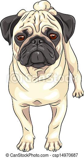 Vector vector sketch cute dog pug breed stock illustration