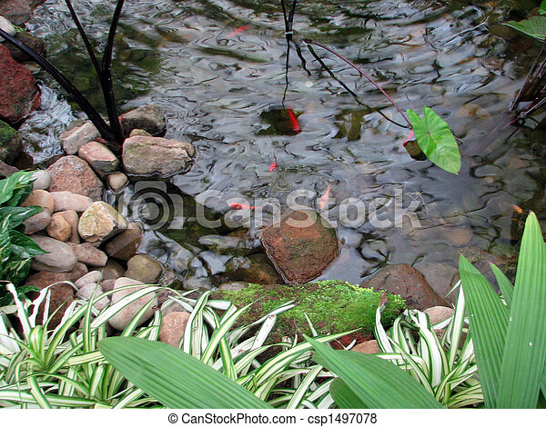 Pictures of goldfish pond an ornamental pond stocked for Best pond plants for goldfish