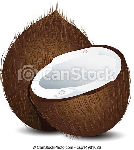 Clip Art Coconut Clip Art coconut illustrations and clip art 13589 royalty free artby