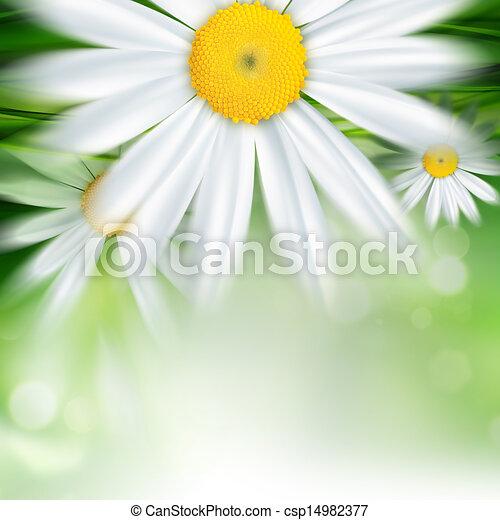 nature background - csp14982377