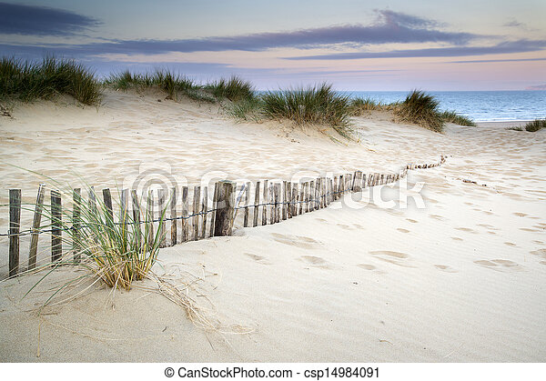 Grassy sand dunes landscape at sunrise - csp14984091