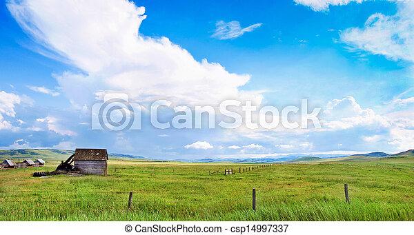Summer landscape in Alberta, Canada - csp14997337