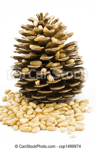 Pine nuts 2 - csp1499974