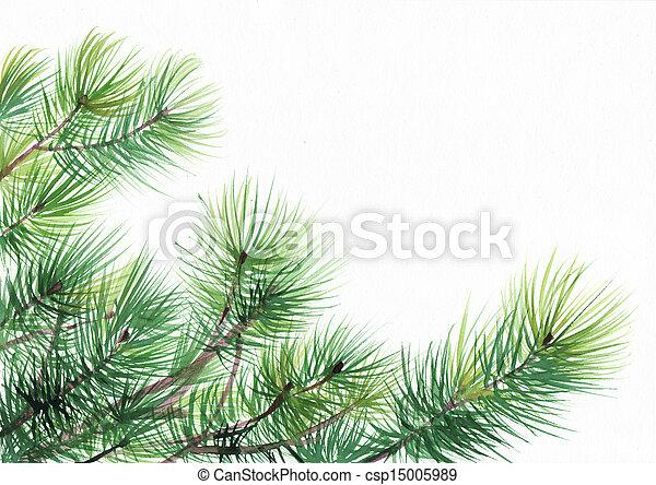 Pine tree branches - csp15005989