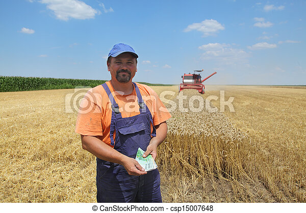 Agriculture, wheat harvest - csp15007648