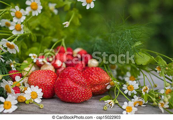 erdbeer, fantasie - csp15022903