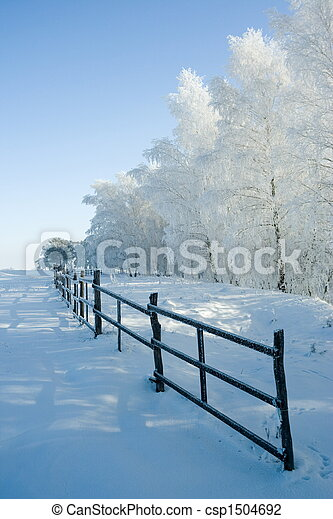 Winter landscape and trees - csp1504692