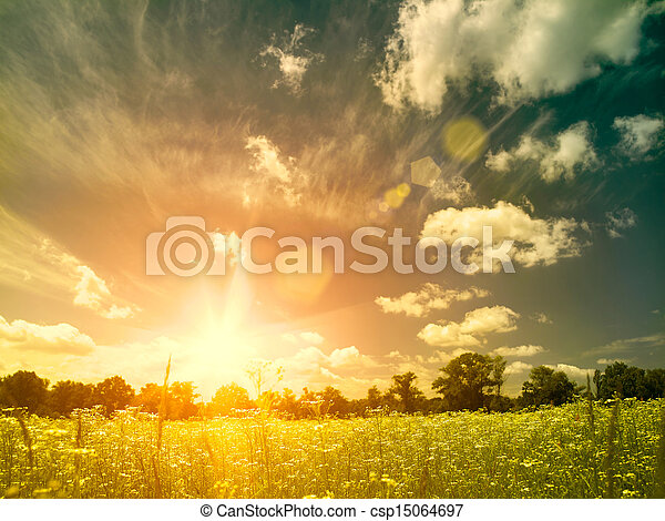 Bright summer sunset over wild meadow. Natural backgrounds with beauty chamomile flowers - csp15064697