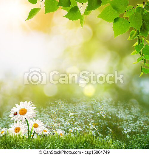 Beauty summer day on the meadow, abstract natural landscape - csp15064749