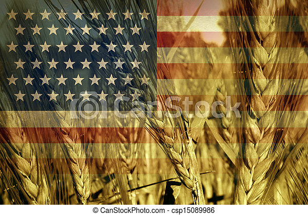 American Agriculture - csp15089986