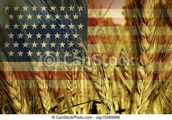 American Agriculture - csp15089986