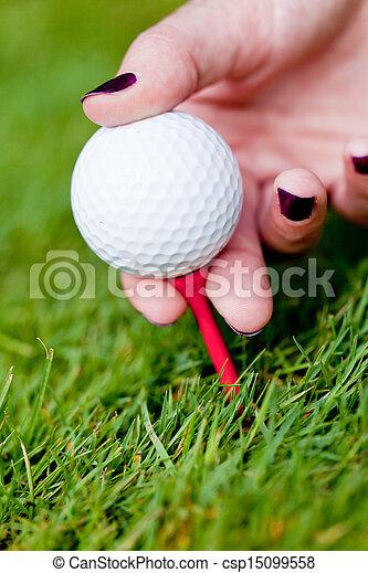 golf ball and iron on green grass detail macro summer outdoor - csp15099558