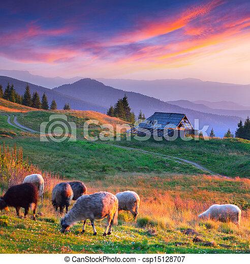 Colorful autumn landscape in mountain village. Sunset - csp15128707