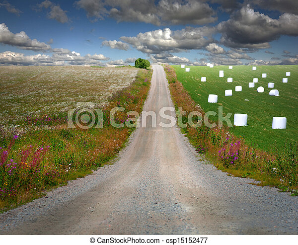 Country road in rural landscape - csp15152477