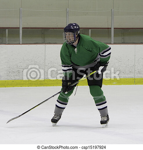 Adult ice hockey player - csp15197924