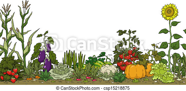 Captivating Vegetable Garden Free Clipart #1