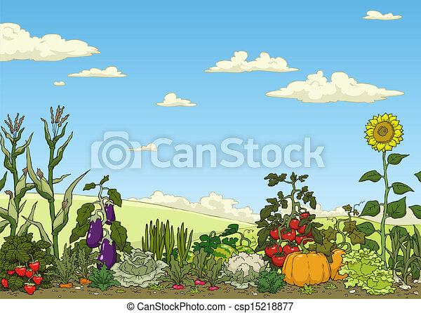 Vectors Illustration of Vegetable garden bed Landscape with
