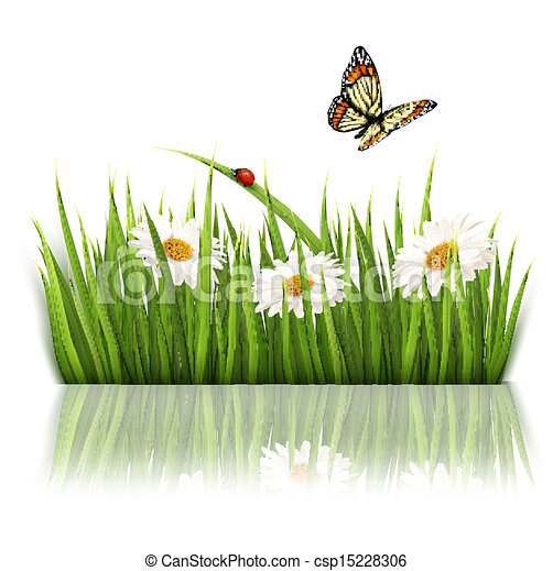Flowers in Grass Drawing Grass And Flowers Vector