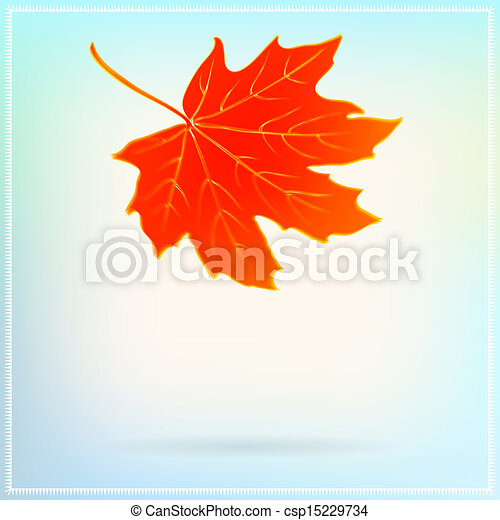 Falling maple leaf on abstract white background - csp15229734