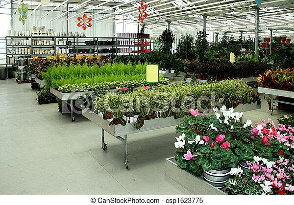 Botanic shop - csp1523775