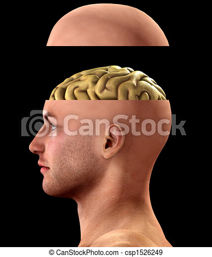 Profile Open Minded Head